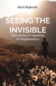 seeing-the-invisible-55x85-cover-long-ru