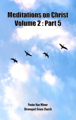 MOCV2P05 Book pic copy
