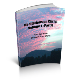 Meditations on Christ Vol 1 Pt8