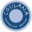 Logo-Cosilana-300x300.png