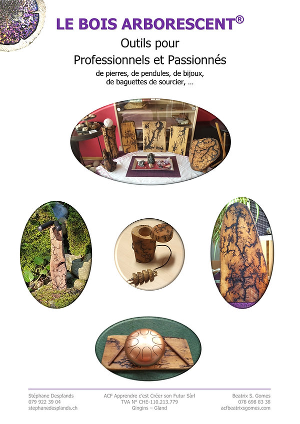 Brochure_BA_2021-04-28_p 9.jpg