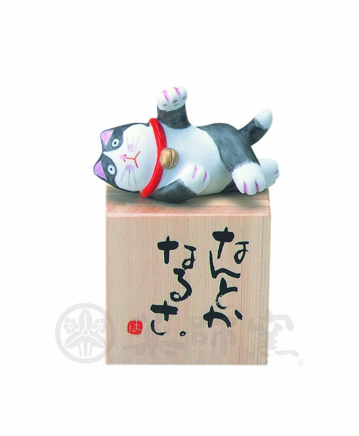 6354やんちゃ猫小枡(なんとかなるさ)