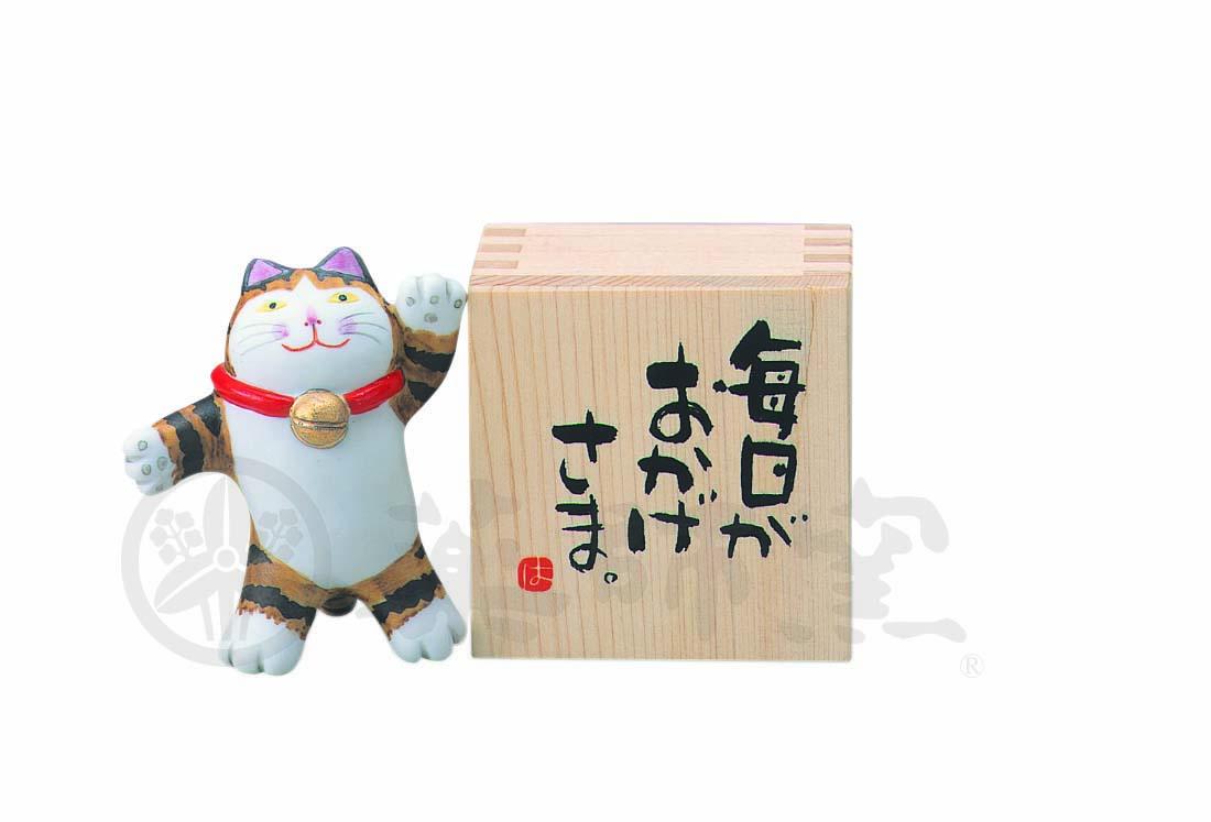 6353やんちゃ猫小枡(毎日がおかげさま)