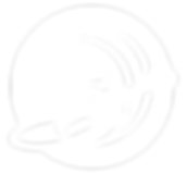 NIKAPADDLESURFCAMP-LOGO_round2-justsymbo
