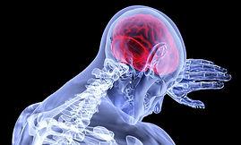 brain-3168269_640.jpg