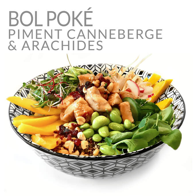 BOL POKE POULET PIMENTCANNEBERGE & ARACHIDE
