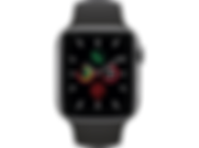 apple watch reptechnic.png