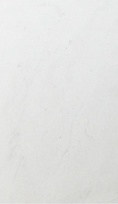 12-branco-pigues.jpg