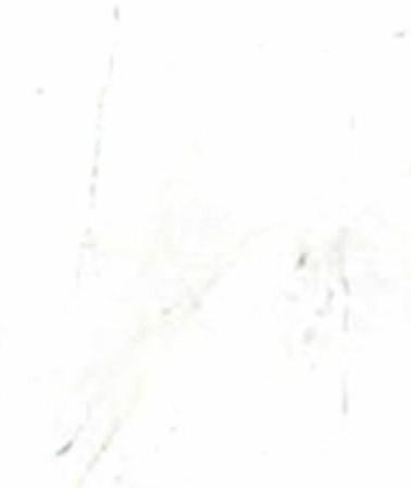 marmore-branco-pigues.jpg