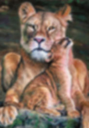 Mother Lion and her Cub Pastel Painting
