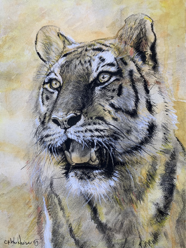 """Tiger"" 🐯salted Watercolor background"