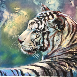 Albino tiger Watercolor background with #stabilo pastel pencils, #panpastels 9.5 x 12 on pastelmat.