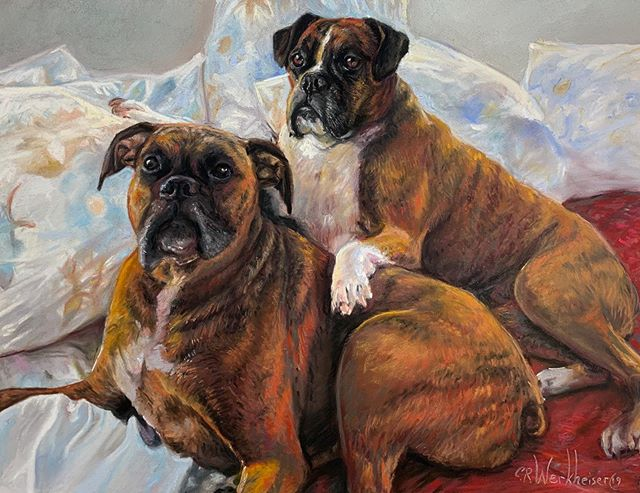 """Boxers"" portrait on pastelmat in pastel"