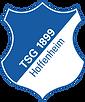 TSG 1899 Hoffenheim.png