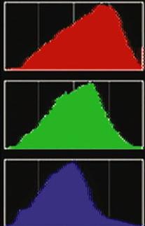Three channel histogram
