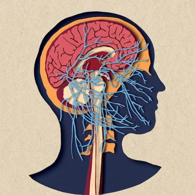 Practicas para equilibrar tu Sistema Nervioso