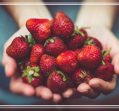 Die Erdbeere ist eine Nuss und die Gurke eine Beere