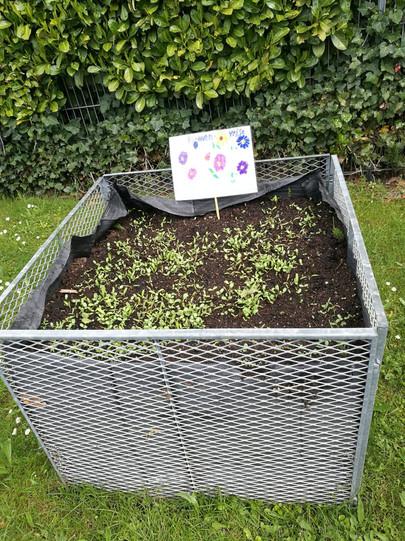 Garten 1 (2).jpeg