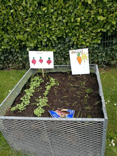 Garten 1 (3).jpeg