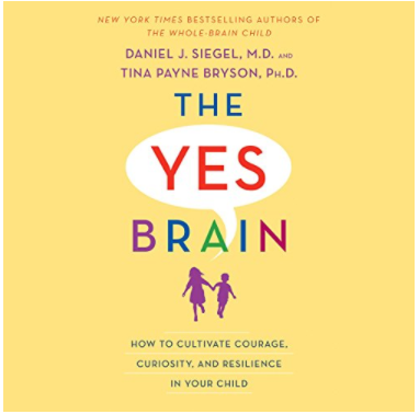 Book: The Yes Brain Child. By Dr. Daniel J Siegel and Dr. Tina Payne Bryson