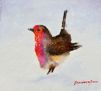Robin SOLD - Prints and greeting cards available.
