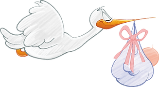 baby-1299514_1280.png