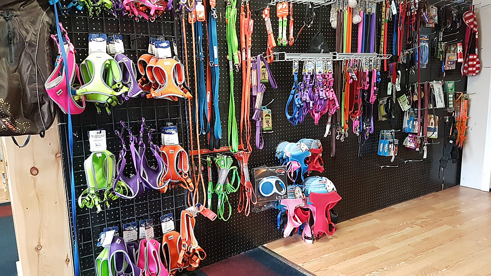 Leads leashes and collars