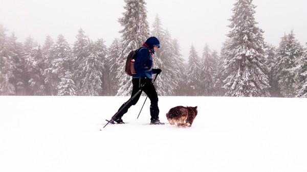 randonneuse de marche nordique et son chien