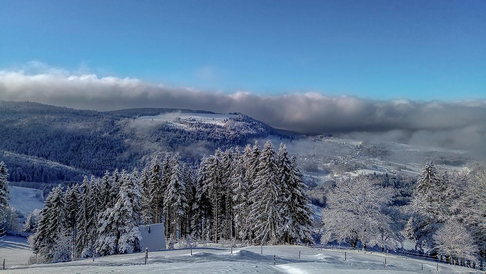 paysage enneigé sous la brume en montagne