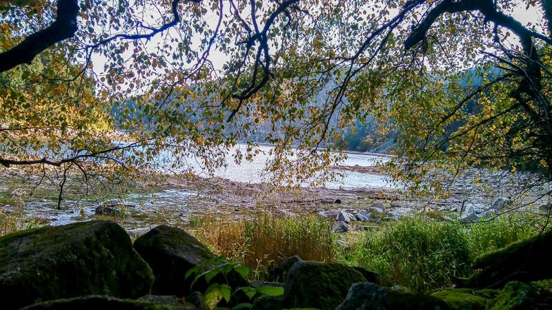 lac et collines masqués par les branches d'un arbre feuillu
