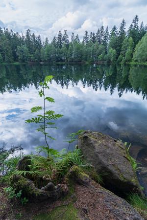 Lac de La Maix, Vexaincourt 31.07.2021  (154)-HDR.jpg