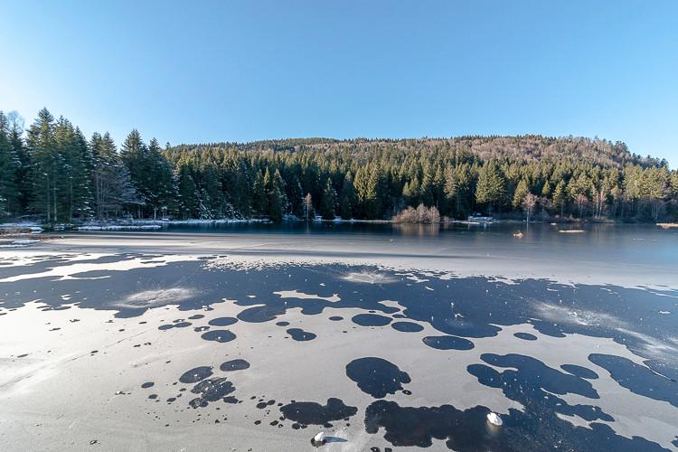 lac gelé et forêt sous ciel bleu
