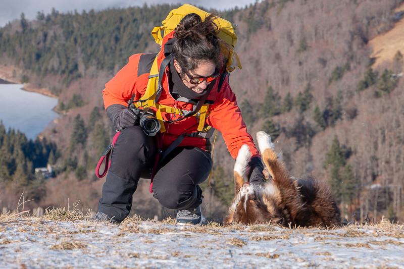 Rondonneuse et son chien