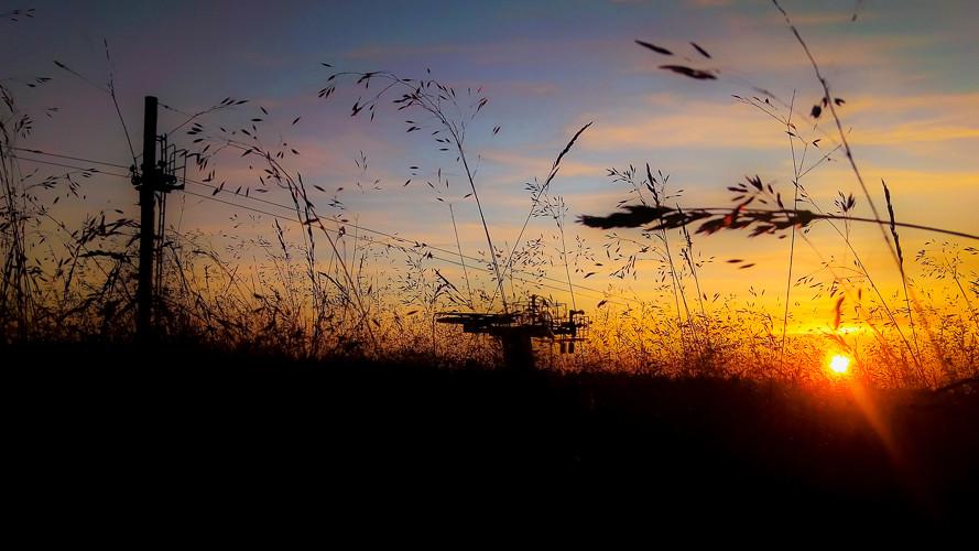 ombres chinoises d'un téléski et de hautes herbes l'été au coucher du soleil