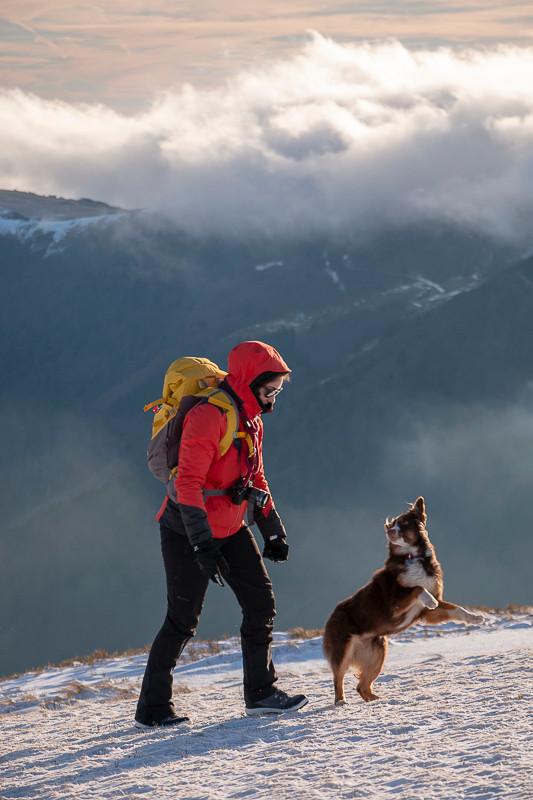 un chien veux jouer avec une randonneuse en montagne