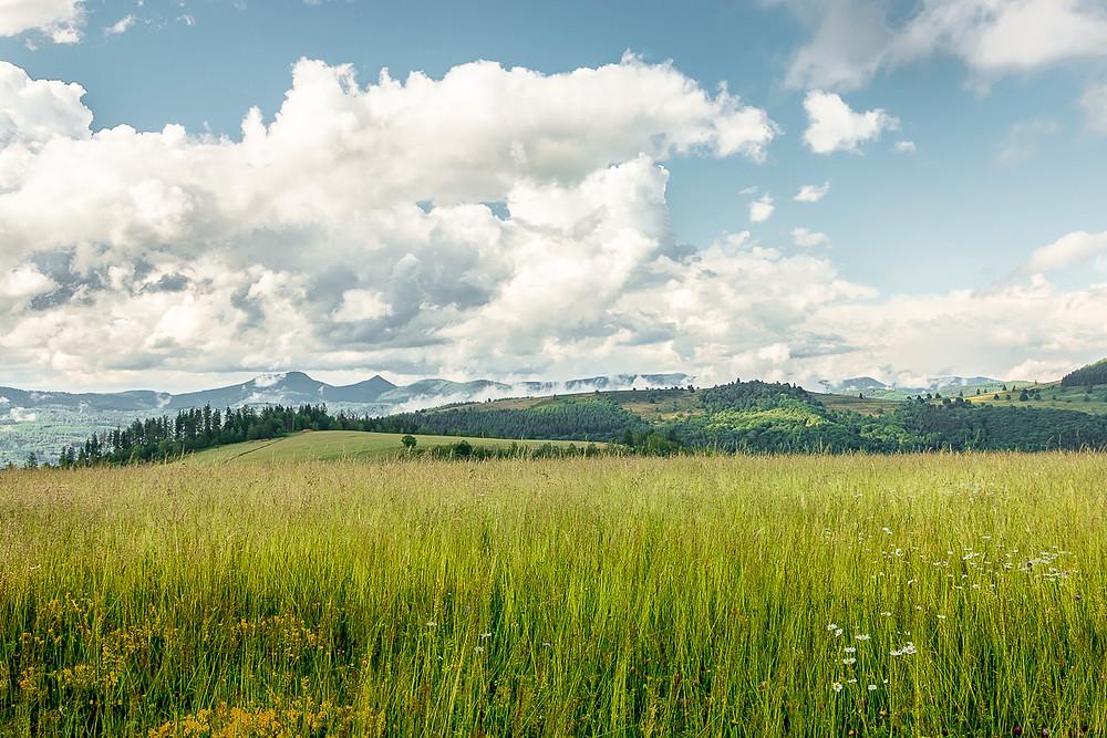 prairie et montagnes du Donon et Col de la Perheux sous un beau ciel nuageux