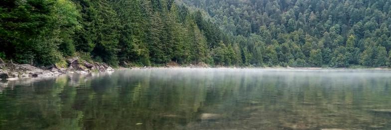 Lac des Corbeaux-La Bresse-Vosges.jpg