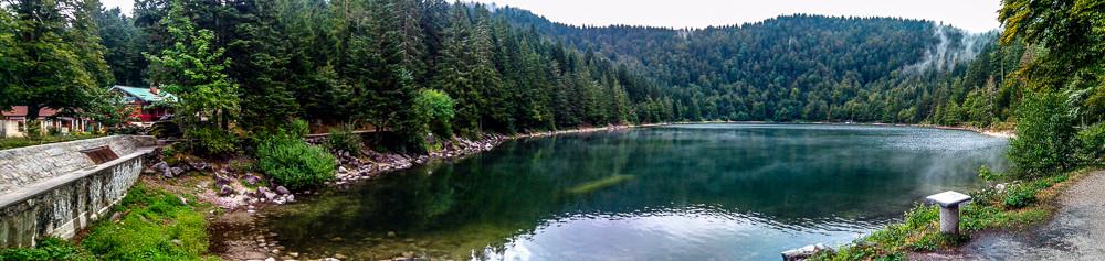 panorama d'un petit lac de montagne entouré par la forêt