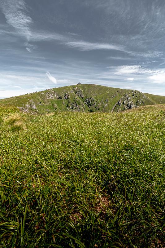 verdure et tourbes avec un sommet montagneux
