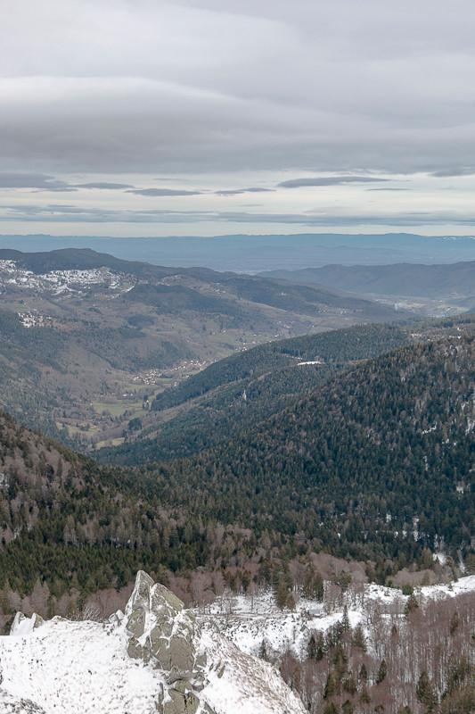 Vallée et forêt vus depuis les falaises