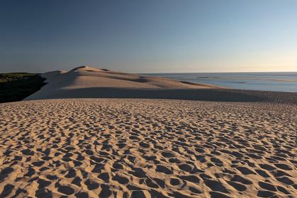 Dune du Pilat, Gironde 04.08.2020  (156)