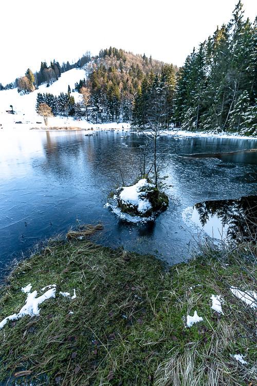 berges d'un lac d'altitude