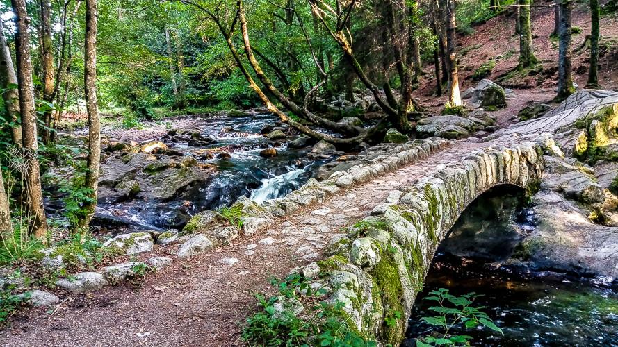 joli pont de pierre au dessus d'une rivière qui passe dans la forêt