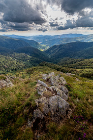 Rothenbachkopf 25.07.2020  (472)-HDR.jpg