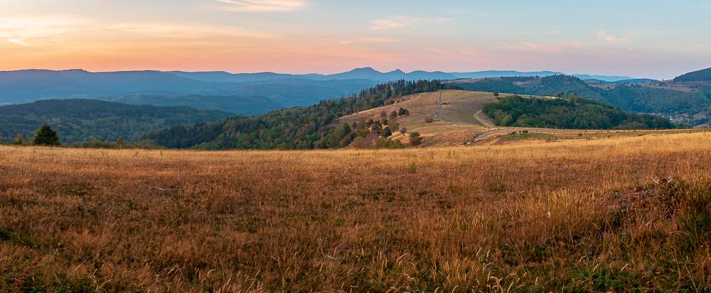 prairies couleurs or sur des collines et vallées boisées