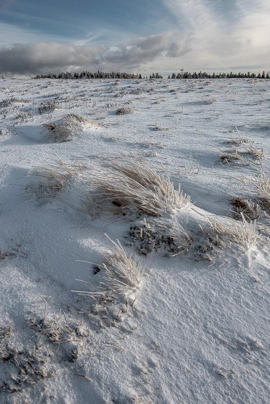 tourbes gelés sur un plateau d'altitude