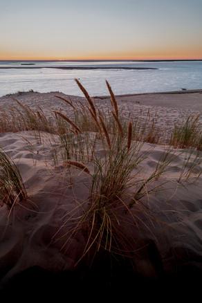 Dune du Pilat, Gironde 04.08.2020  (386)