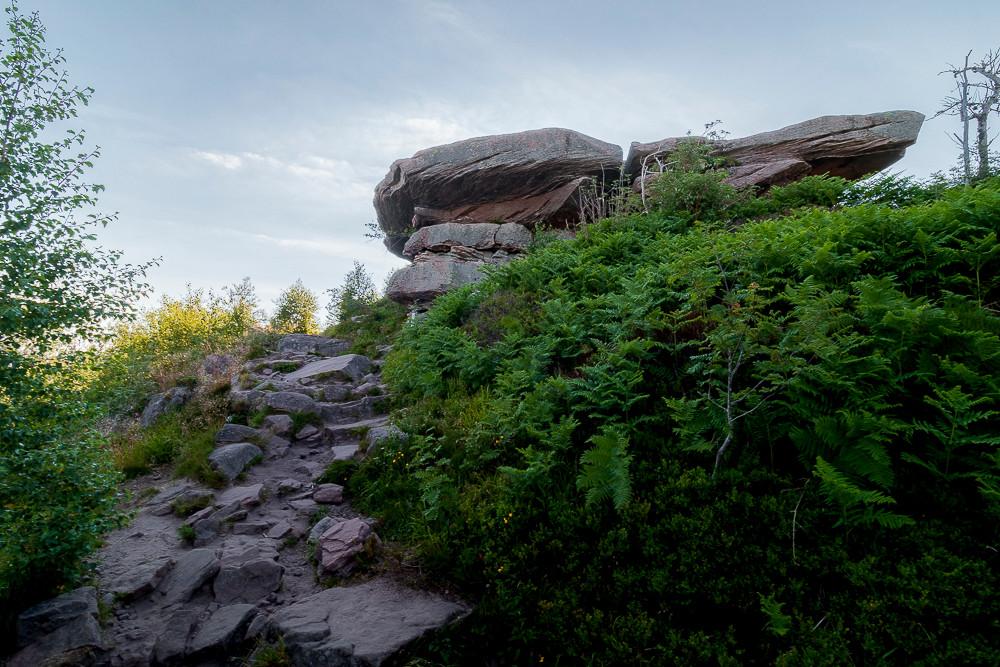 dalle de grès des Vosges au dessus d'un sentier