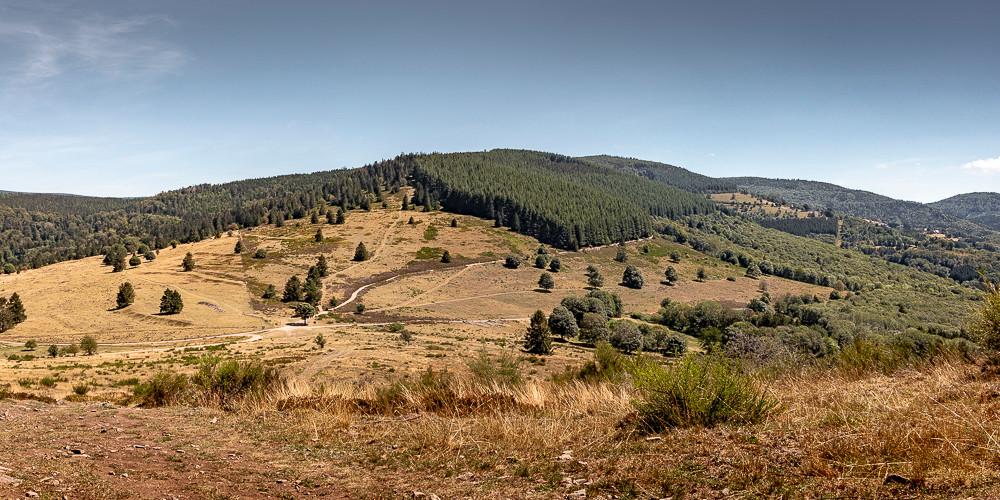 plateau montagneux collines et foret