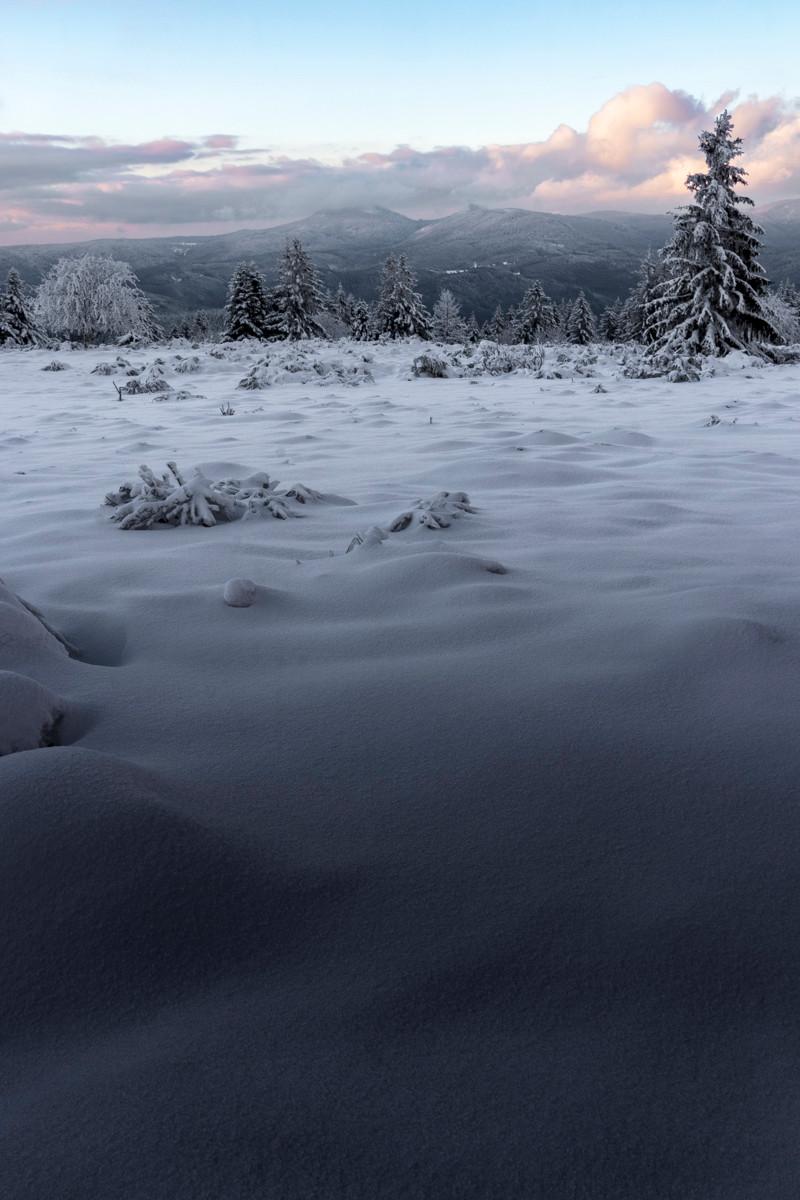 paysage de prairie et de montagnes en hiver